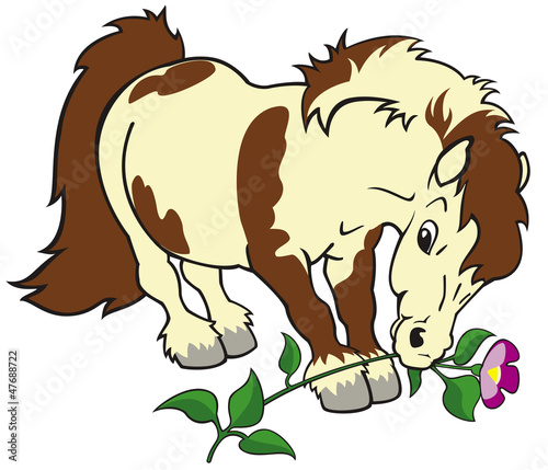 Tuinposter Pony cartoon pony with flower