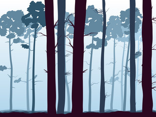 Horizontal illustration of pinewood forest.