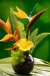 Hibiscus, Heliconia and Bird of Paradise flower in a vase.