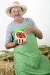 Biobauer mit einigen Tomaten in einem kleinen Korb