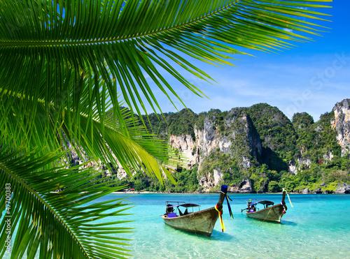 tropical sea © Pakhnyushchyy