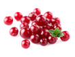 Heap of juicy cranberry