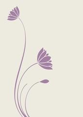 water lilies, Buddha ,Zen , yoga, beauty, royal India