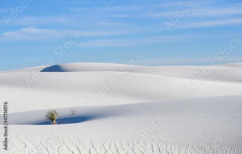 Fototapeten,sand,ocolus,weiß,new mexico