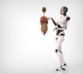 Humanoide con anatomia humana