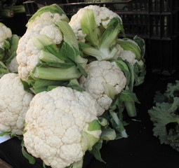 Boxes of organic cauliflower for sale at farmers market
