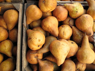 Boxes of organic Bosc pears for sale at farmers market
