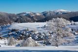 Fototapety Winter, Schnee, Frost, Baum,  Berg, Dorf