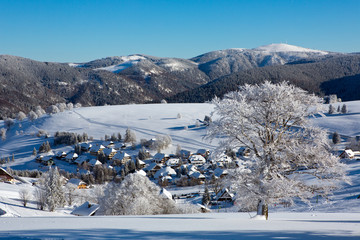Winter, Schnee, Frost, Baum,  Berg, Dorf