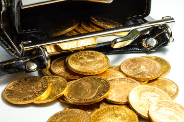 Gold coins in purse