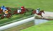 Fototapeten,pferd,jockey,jump,besorgung