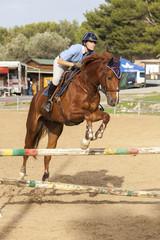 Concours équestre de saut d'obstacle