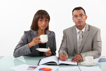 business people examining a project with a coffee