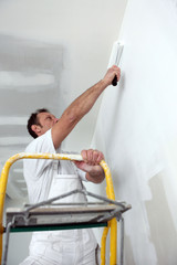 painter using roller
