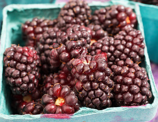 Red Juicy Boysenberries