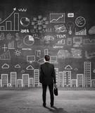 businessman  looking business plan