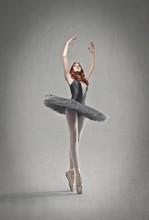 Indigo Ballerina