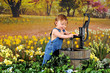 Pump among the Daffodils