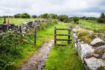 Footpath leading through a gate across Bodmin Moor