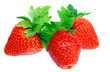 Three fresh strawberries. Isolated