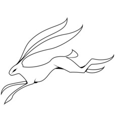 Black and white hare jumping vector