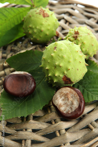Chestnuts with leaves on wicker background