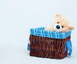 cuddly toy bear in the webbed basket poster