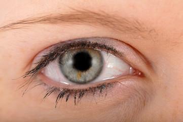 Auge einer Frau in Nahaufnahme