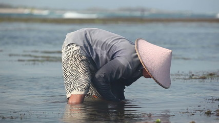somebody in Vietnamese hat doing something in the dirty water