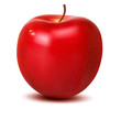Red fresh apple isolated on white. Vector