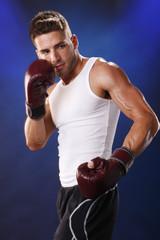 Box training - action shots
