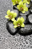 Set of green orchid and zen stones with water drop - 47815708