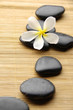 zen stones with frangipani flower arranged on wooden board