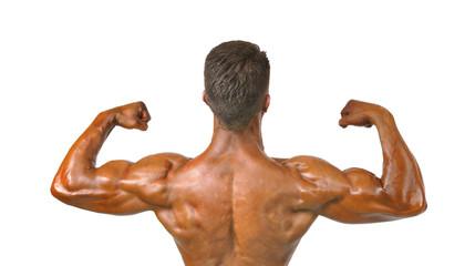 Musculatura masculina.