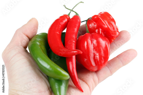 Hot chili peppers in hand, isolated on white