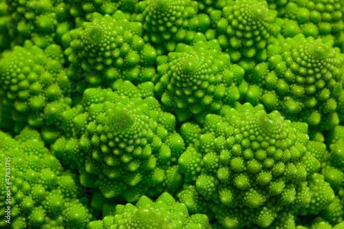 Romanesco broccoli cabbage marco