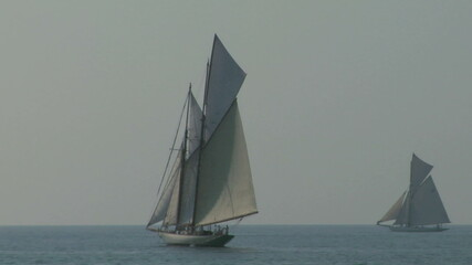 old sail regatta 11