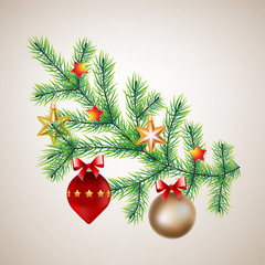 Christmas decoration with pine branch