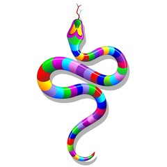 Snake Psychedelic Rainbow-Serpente Arcobaleno Psichedelico