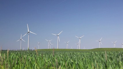 Wind Turbines in blue sky and green grass