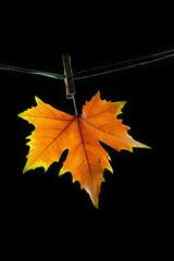 alegoría sobre el otoño