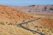 Teide National Park Road