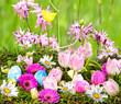 Frohe Ostern: Eier suchen auf Blumenwiese