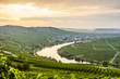 Leinwanddruck Bild - famous Moselle Sinuosity with vineyards