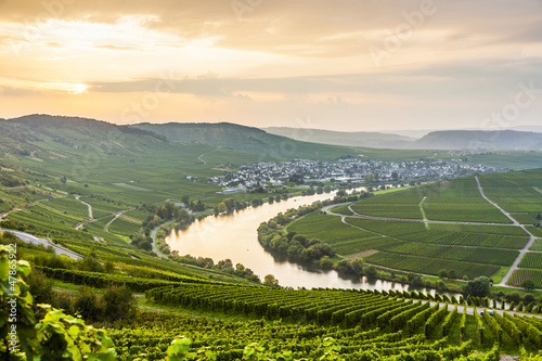 Leinwanddruck Bild famous Moselle Sinuosity with vineyards