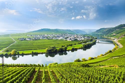 Leinwandbild Motiv famous Moselle Sinuosity with vineyards