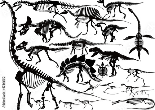 Dinosaur Skeleton silhouette collection