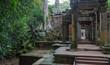 Ta Prohm, Angkor Wat