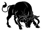 Stylised bull illustration