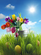 Easter eggs and flowers on meadow with sky abstract concept